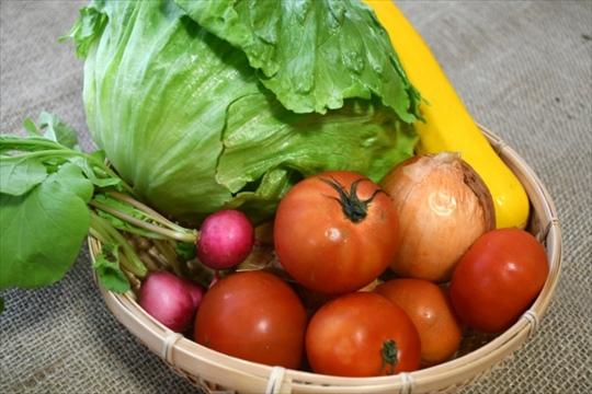 【食べチョク 野菜セット】独断と偏見で選んだおすすめ農家ベスト10!